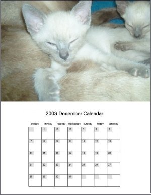Calendar Template Software Creating Templates For Your Personalised Calendars screenshot